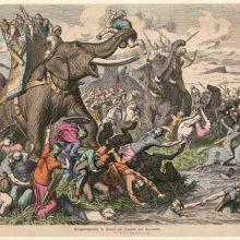 Боевые слоны (1): оружие поражения?