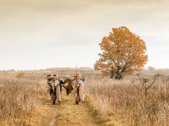 Цвет истории: походы легионеров