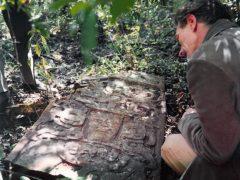 Как случайно найти новый монумент майя?