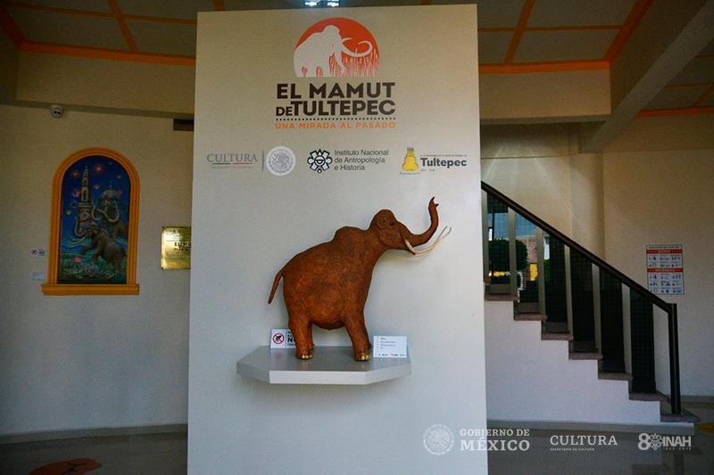 mamut-11.jpg