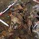 Гробница скифских «амазонок» была найдена под Воронежем