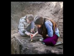 Начало археологического сезона 1