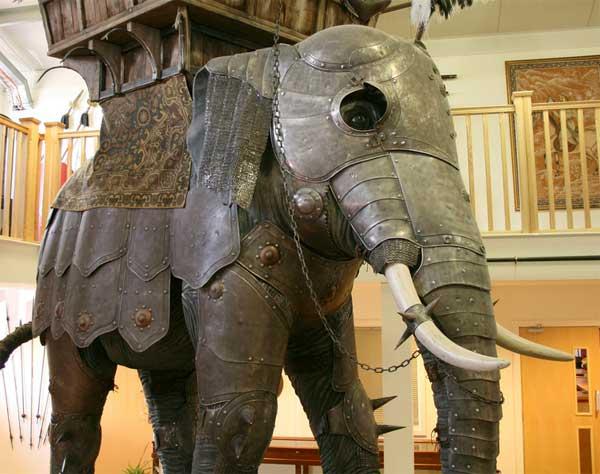 boevoj slon_005
